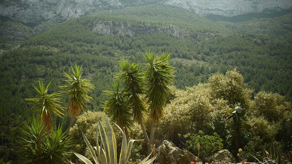 Sehenswerte Naturparks in der Provinz Alicante - Lara Cars