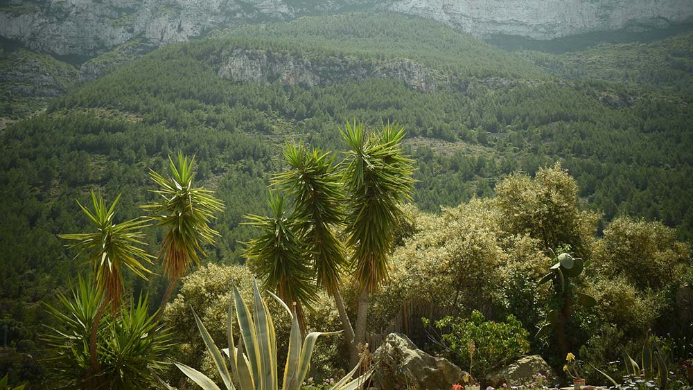 Top natural parks you shouldn't miss around Alicante