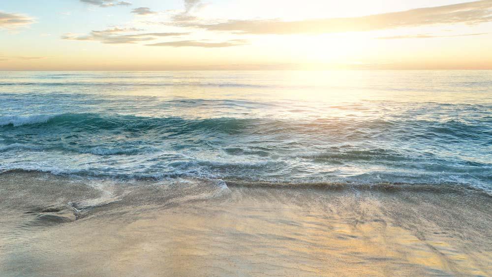 3 verschiedene Vorschläge für Unternehmungen in La Marina