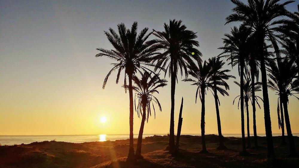 Visita las increíbles playas de Torrevieja