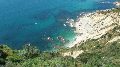 La fauna y flora marina que albergan en sus acantilados